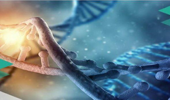 Xét nghiệm ADN GENPRO, Trang chủ ADN GENPRO